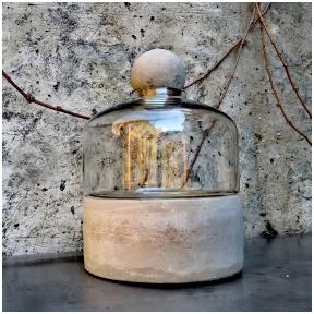 Bottle terrarium on concrete base
