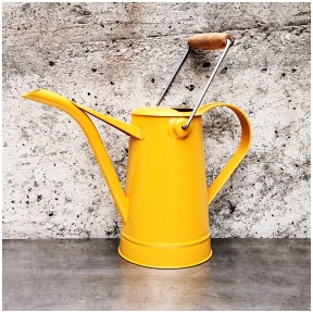 Watering can with wooden handle