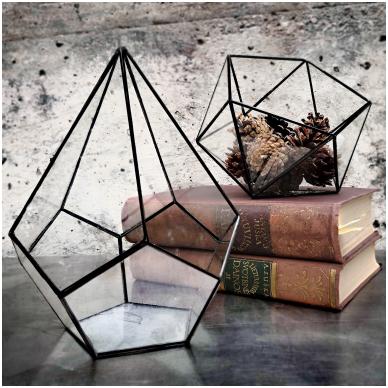 Lašo formos geometrinis terariumas augalams 4