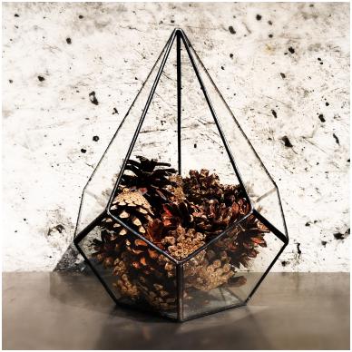 Lašo formos geometrinis terariumas augalams 3