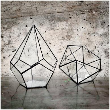 Lašo formos geometrinis terariumas augalams 5