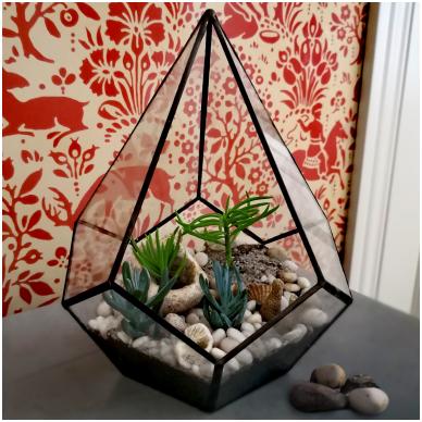 Lašo formos geometrinis terariumas augalams 2