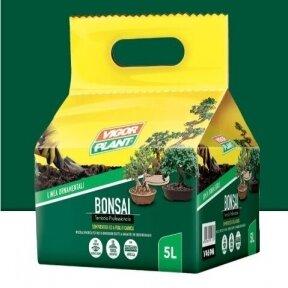Substratas bonsai