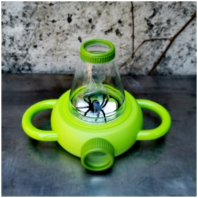 Insects watch tool
