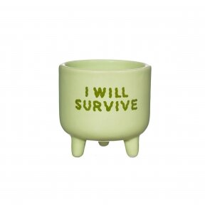 "Vazonėlis 'I will survive"""