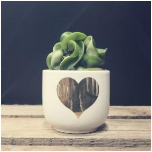 Vazonėlis širdelė
